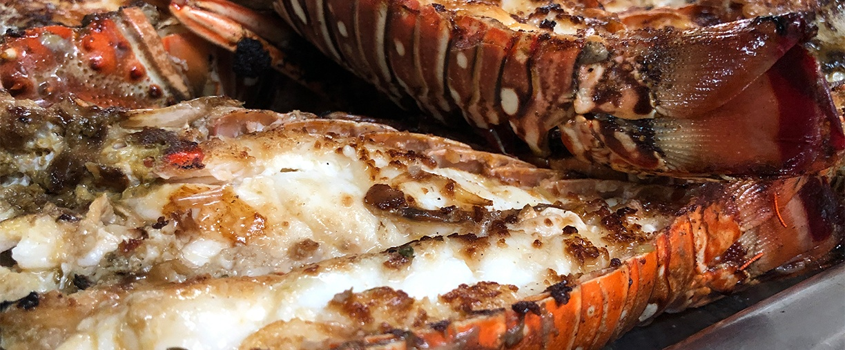 grill-lobster-photo